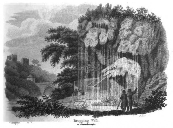 "Engraving of the ""Dropping Well"" from the Yorkshire volume of The Beauties of England... by John Bigland."