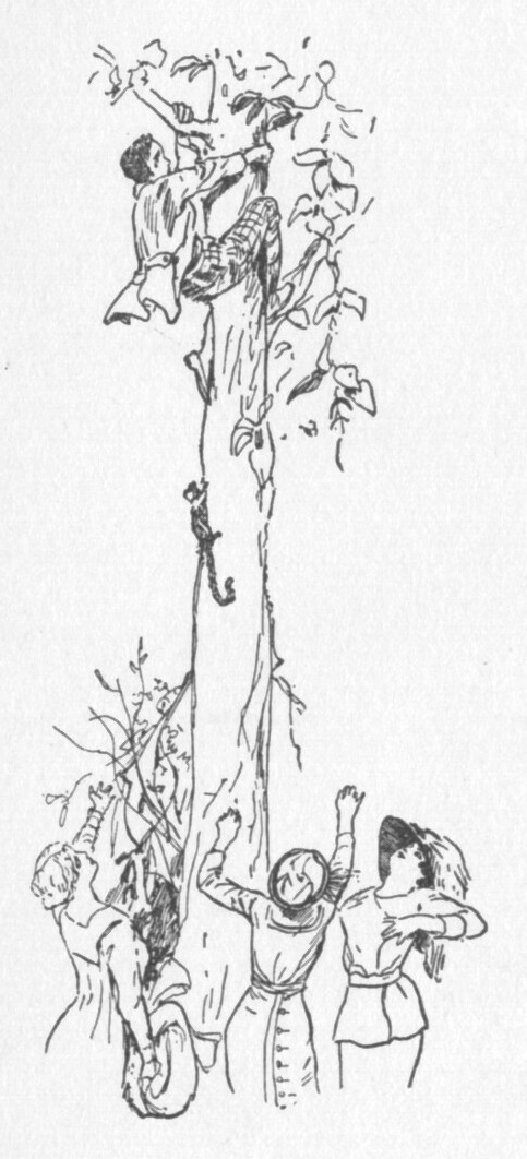 Line drawing of a man clinging to the trunk of a tall tree with a group of women gathered around the base below him reaching up.